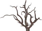 Dead Oak (Feral Designs)