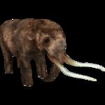 American Mastodon (Tyranachu)