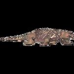 Crocodile Monitor (Zooa)